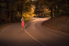 Ciemny las, zmierzchu wschód słońca, drewniani drzewa, biega jogging na asph fotografia royalty free