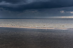 Ciemny morze bałtyckie Fotografia Stock