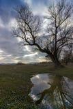 Ciemny niebo z światłem słonecznym Zdjęcia Royalty Free
