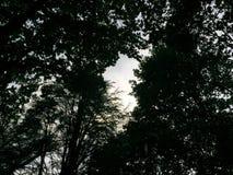 Ciemny spotyka światło Zdjęcia Royalty Free