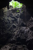 Ciemny wejście naturalna jama Obrazy Royalty Free