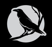 Ciemny Zły heraldyczny kruk z rozciągniętymi skrzydłami ilustracji