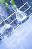 Ciencia floral en laboratorio azul Fotografía de archivo libre de regalías