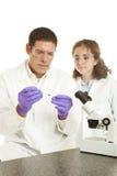Ciencia forense Fotografía de archivo libre de regalías