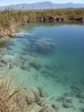cienegas cuatro Mexico rafowy stromatolite Zdjęcia Stock