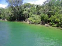 Cienfuegos bay seashore. Green crystalline waters and cosat vegetation, Caribbean sea, Cuba Stock Photo