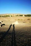 cieni pustynni ludzie Fotografia Royalty Free