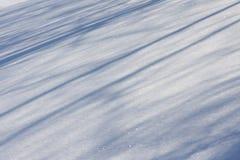 cienia lekki śnieg Fotografia Royalty Free