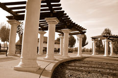 cienia parkowy jawny trellis fotografia royalty free