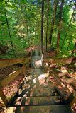 Cienia stanu parka schody krajobraz Fotografia Stock