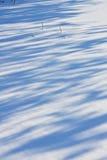Cienie na śniegu Obrazy Royalty Free