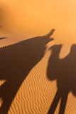Cienie na piasku Obraz Stock