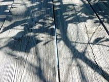 Cienie na popielatym drewnianym tle Obraz Royalty Free