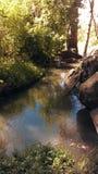 Cienie na rzece Fotografia Stock