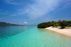Cienie tropikalny błękit obrazy stock