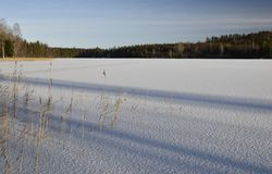 Cienieje lód na jeziorze z błyskotliwym śniegiem Zdjęcia Royalty Free