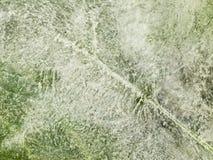 Cienieje lód z bąblami Fotografia Royalty Free