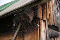 Cienka biała pajęczyna, rozciągająca pod dachem stary drewniany skąpanie zdjęcia royalty free