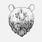 Cienki rocznik linii niedźwiedź Obrazy Royalty Free