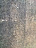 Ścienny Writing przy Antycznym miastem Anuradhapuraya Obraz Stock