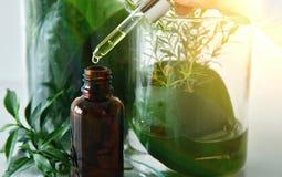 Científico con la investigación natural de la droga, la botánica orgánica natural y la cristalería científica, medicina verde alt imagenes de archivo