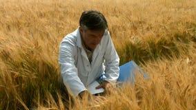 Científico de la comida que comprueba cosechas almacen de metraje de vídeo