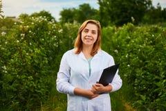 Científico de la mujer que trabaja en jardín de la fruta El inspector del biólogo examina arbustos de zarzamora foto de archivo libre de regalías