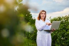 Científico de la mujer que trabaja en jardín de la fruta El inspector del biólogo examina arbustos de zarzamora usando el ordenad fotos de archivo