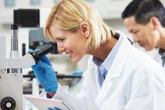 Científico de sexo femenino que usa el ordenador de la tablilla en laboratorio Imágenes de archivo libres de regalías