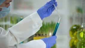 Científico que añade el aceite orgánico en tubo con la sustancia azul, análisis del agente de lavado almacen de video