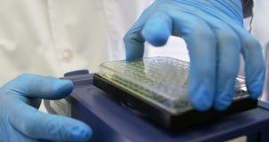 Científico que cierra la tapa del microplate 4k almacen de metraje de vídeo