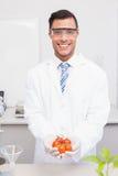 Científico sonriente con los vidrios protectores que sostienen los tomates Foto de archivo