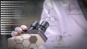 Científicos que miran a través de un microscopio almacen de video