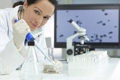 Científico de sexo femenino con la pipeta en laboratorio Foto de archivo libre de regalías