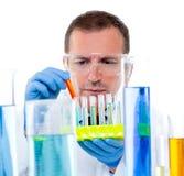 Científico del laboratorio que trabaja en el laboratorio con los tubos de ensayo Foto de archivo