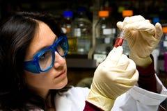 Científico que mira el tubo de prueba Imágenes de archivo libres de regalías