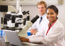 Científicos de sexo masculino y de sexo femenino que usan los microscopios en laboratorio Imagen de archivo libre de regalías
