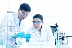 Cientista asiático do trabalho da equipe que olha através de um microscópio em um laboratório Cuidado saudável, pesquisador  fotografia de stock royalty free