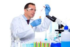 Cientista do laboratório que trabalha no laboratório com tubos de ensaio Foto de Stock Royalty Free