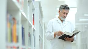 Cientista/doutor em uma biblioteca Fotos de Stock Royalty Free