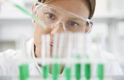 Cientista Filling Test Tubes com pipeta imagens de stock