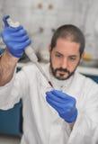 Cientista Filling Test Tubes com a pipeta no laboratório fotos de stock royalty free