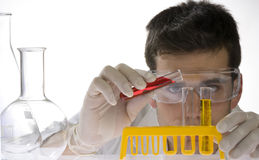 Cientista novo que trabalha em seu laboratório fotos de stock royalty free