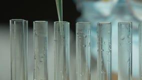 Cientista que adiciona a amostra, evaporação líquida do tubo de ensaio, ciência nuclear filme
