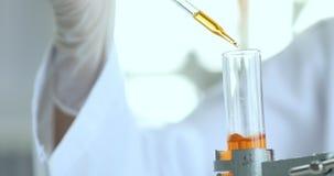 Cientista que deixa cair o líquido alaranjado no tubo de ensaio video estoque