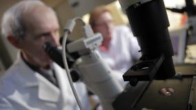 Cientista que olha através de um microscópio em um laboratório filme