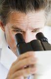 Cientista que olha através do microscópio Fotos de Stock Royalty Free