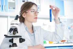 Cientista que olha no tubo de ensaio Imagens de Stock Royalty Free