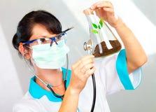 Cientista que verific a saúde de uma vida Foto de Stock Royalty Free
