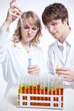 Cientistas de trabalho Fotografia de Stock Royalty Free